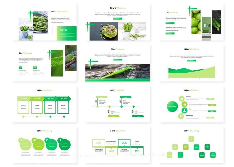 绿色蔬果项目展示信息图表商业PPT模板key模板