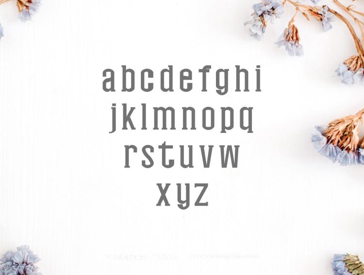 现代平板的海报传单衬线英文字体下载素材