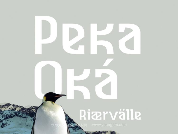 北欧风格的衬线英文字体设计图片