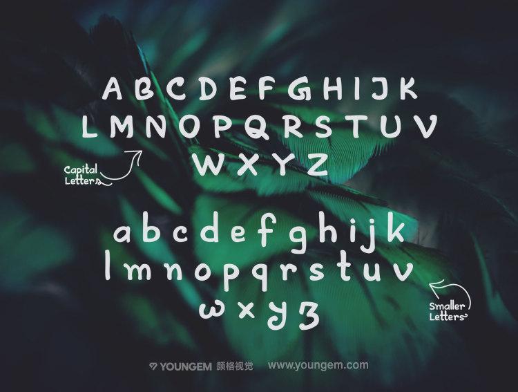 精美的网站标题T恤印刷手写英文字体设计素材