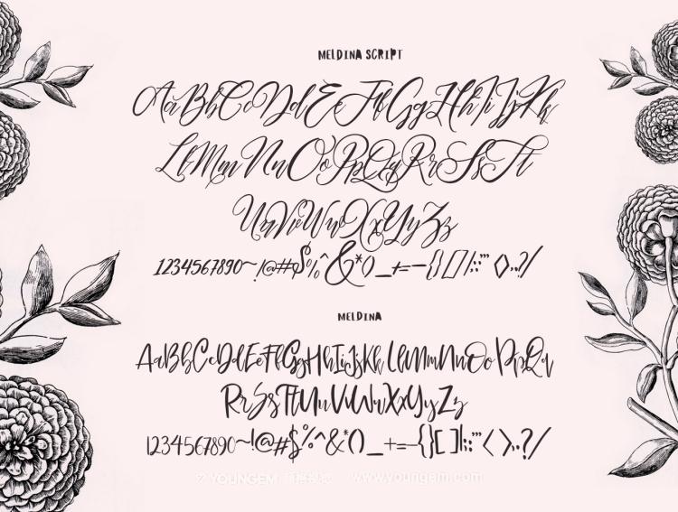 礼品包装促销报价连字手写英文字体下载模板