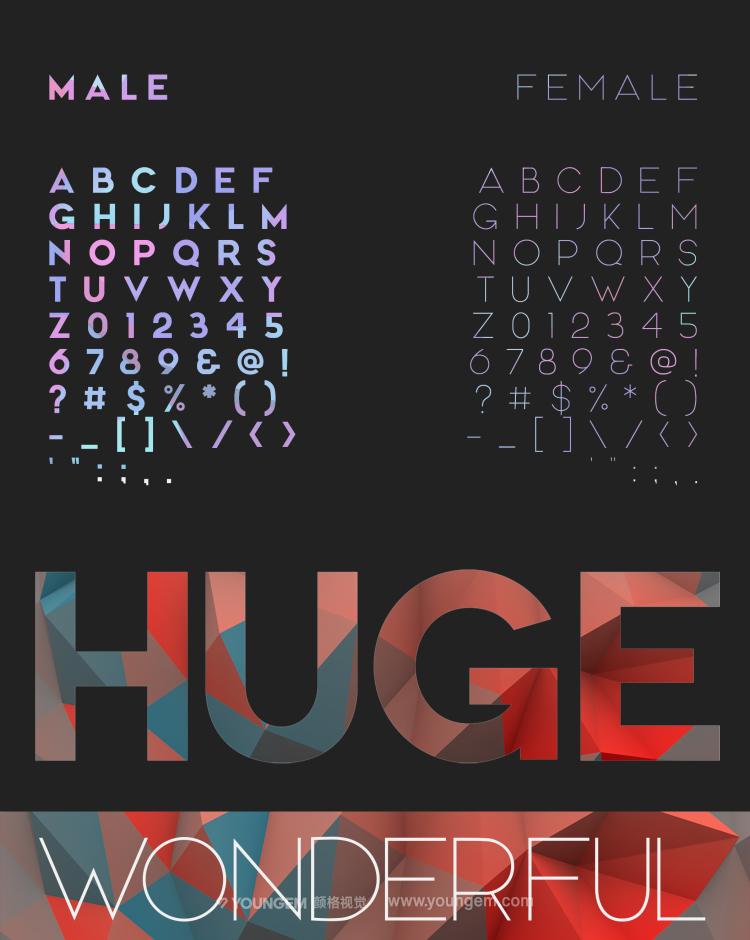 商品报价包装封面海报无衬线英文字体设计素材