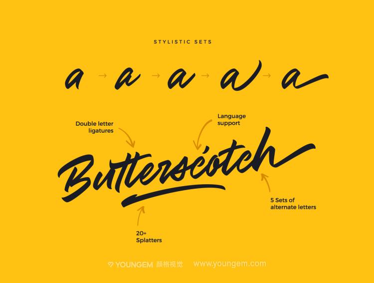 商品封面包装logo设计手写英文字体设计模板