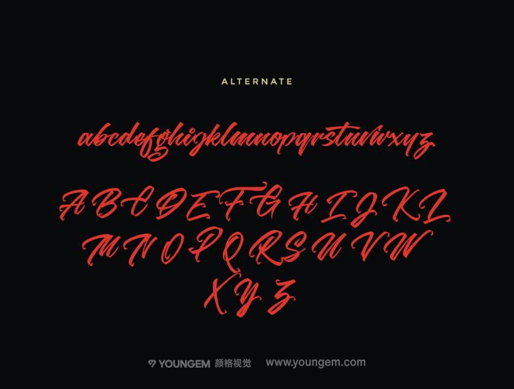 商品包装广告logo设计练字手写英文字体设计模板