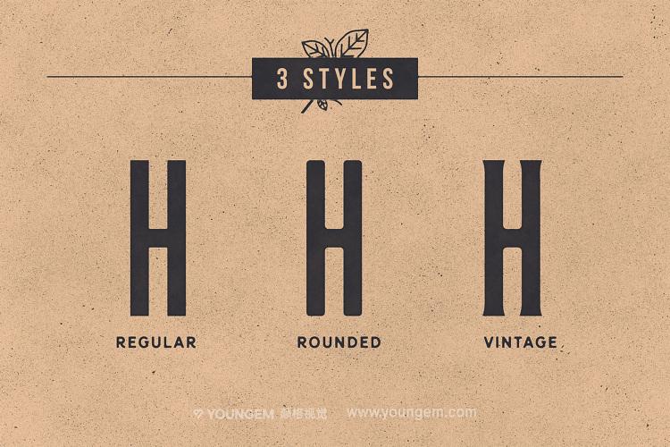品牌logo设计艺术英文字体下载素材