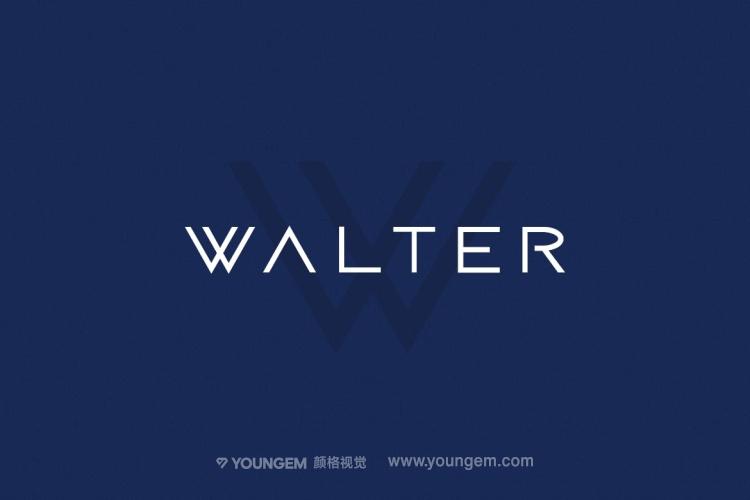 产品包装logo设计英文字体下载图片