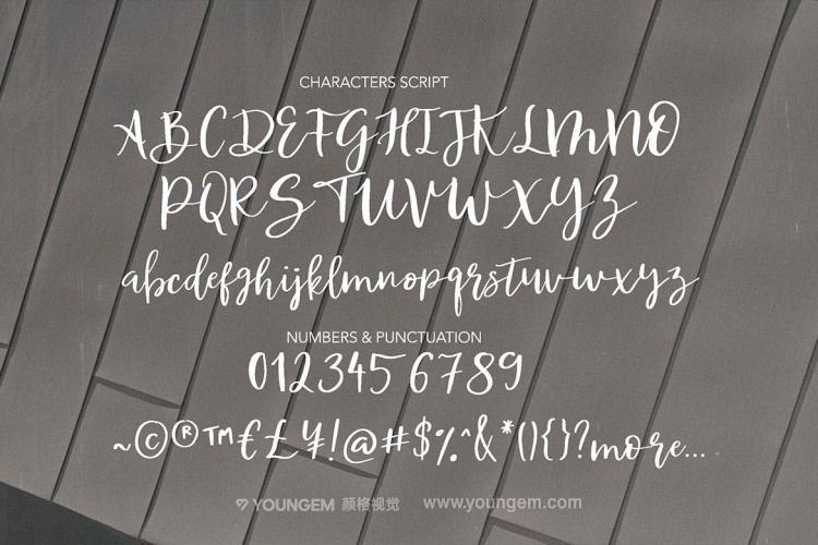 连字时尚杂志封面标题手写英文字体设计模板