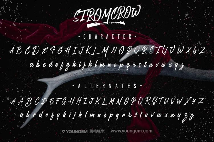 T恤印刷logo设计艺术手写英文字体下载素材