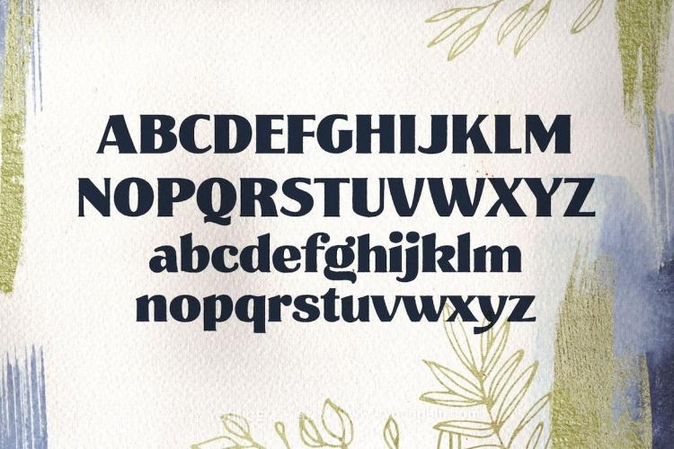 轮廓粗糙的英文字母_商品包装商标logo衬线英文字体模板